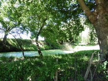 la nature environante (3)