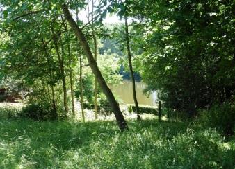 vue sur rivière (1)